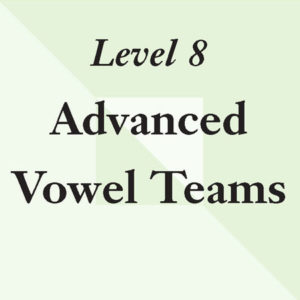 Level 8: Advanced Vowel Teams – No Tiles